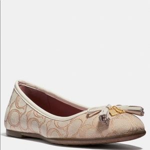 NIB Coach LIGHT KHAKI Benni Ballet Flats Shoes 8 M